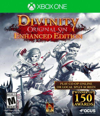 Divinity: Original Sin (Enhanced Edition) - 11 Best Xbox One Multiplayer Games